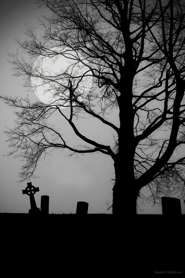 Cemetery by Tammy LeMasters Gross  Check out her work on facebook  http://www.facebook.com/threewillowsimagery