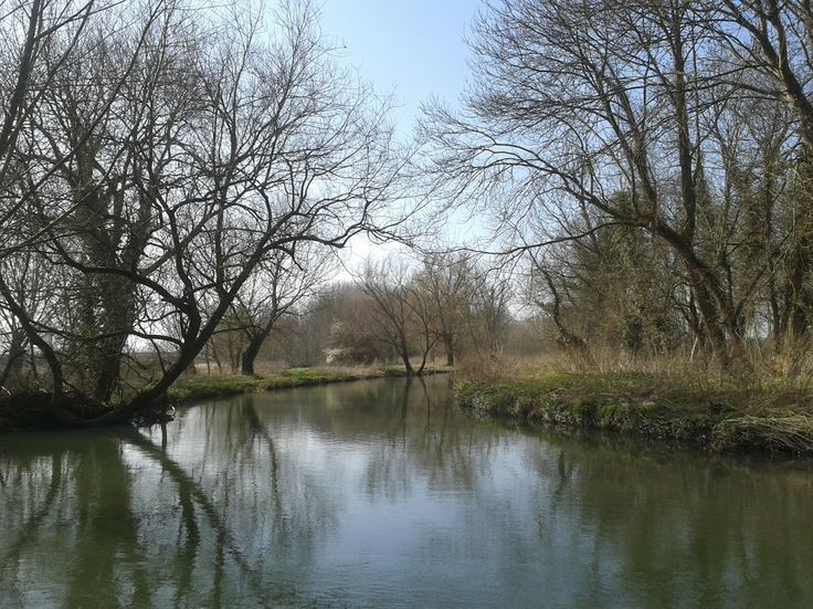 Byron's Pool, Grantchester. nr. Cambridge.