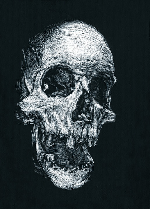 SCRATCHBOARD by Kevin Fleming