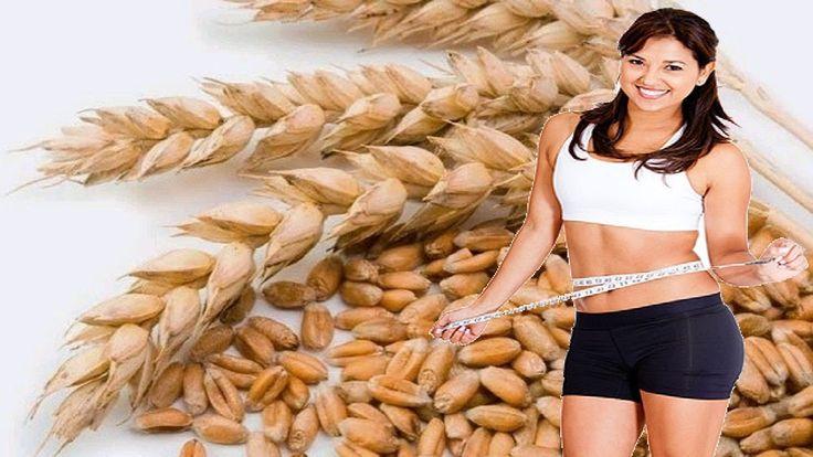 ✯✯✯  Barley Benefits Weight Loss    Barley For Weight Loss ✯✯✯