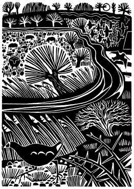 COOT AND STREAM, January, 2014, Carry Akroyd, linocut, c7 1/2 x 5 in., Oundle…