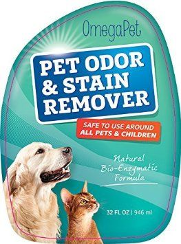 17 Best Images About How To Get Rid Of Dog Smell Out Of