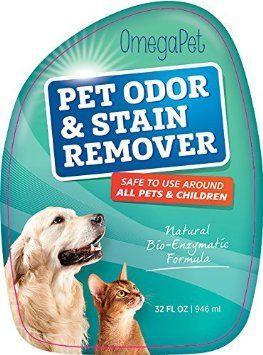No More Stinky Smelling Dog Beds