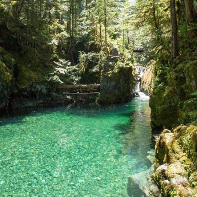 Hiking Opal Creek, Oregon