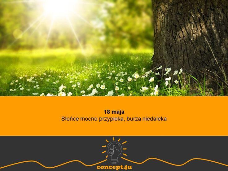 przysłowia polskie na miesiąc maj - www.concept4u.eu