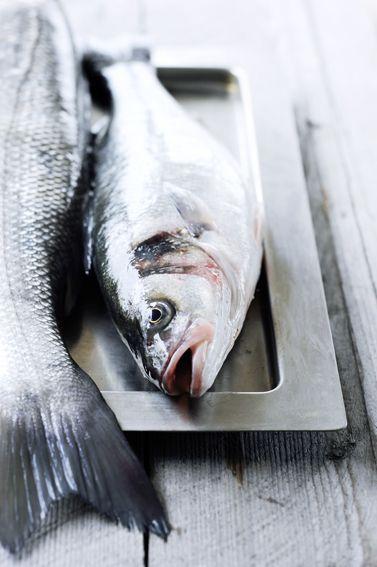 Zeebaars in zoutkorst. Deze maandag kiezen we voor een ouderwets recept voor het bereiden van vis: zeebaars in zoutkorst. Kies hele vis, dat heeft de voorkeur.