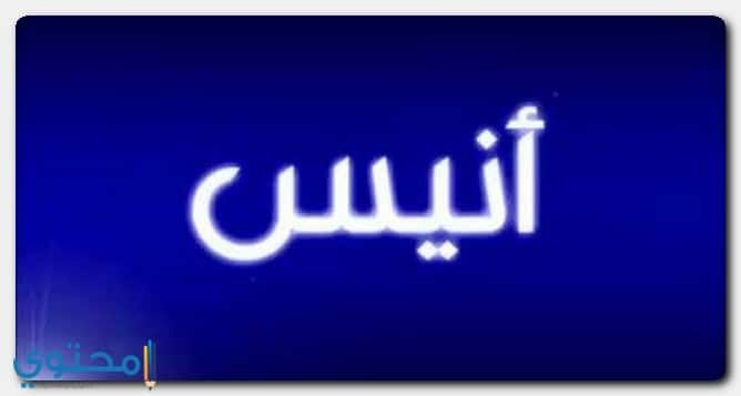 معنى اسم أنيس وحكم التسمية Anis معاني الاسماء Anis اسم انيس Gaming Logos Neon Signs Logos