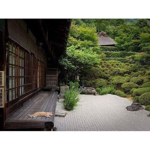 Japan chill house