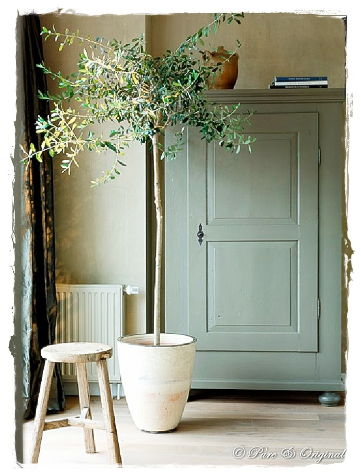Pretty painted cupboard