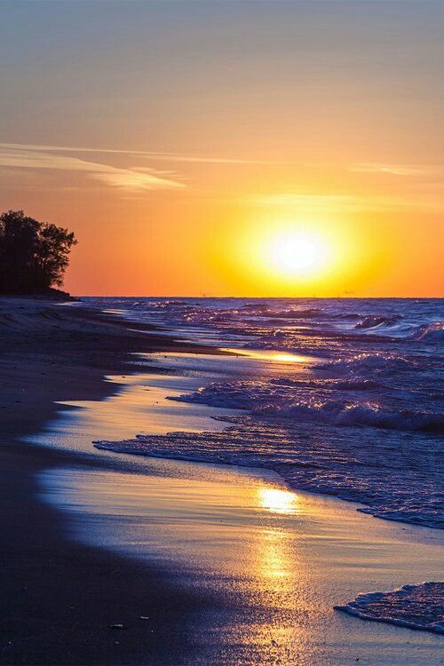 Gorgeous beach sunset.