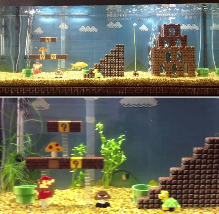 Mario lego aquarium decoration.  Awesome, but probably a huge PITA to clean.