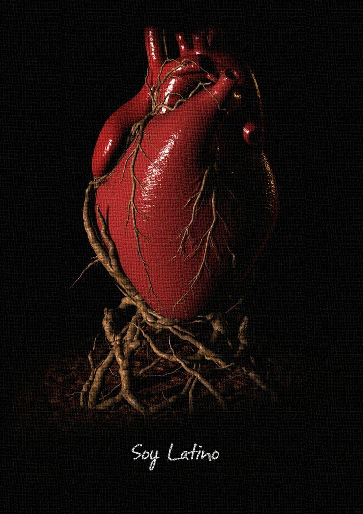 corazon raices