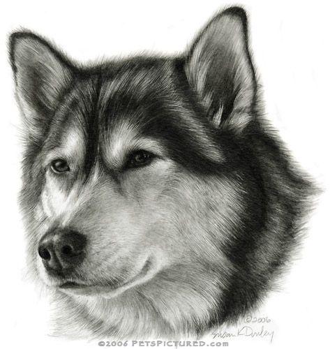 ...drawing
