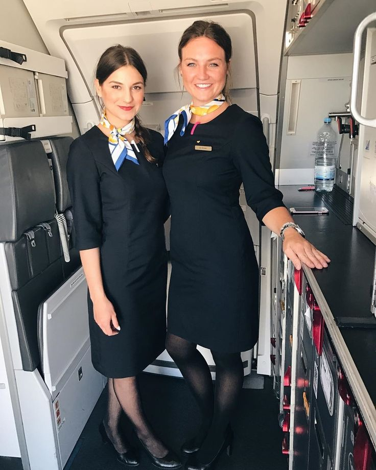 cover letter flight attendant%0A Flight Attendant  This Morning  Pilot  Plane  Kos  Aviation  Aircraft   Greece  Twins