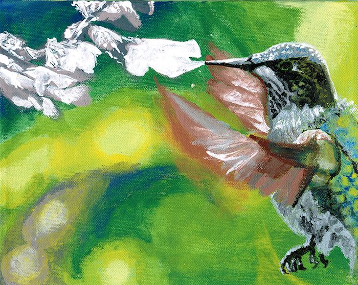 Hummingbird by Firiel | © [Berne Convention] 2012