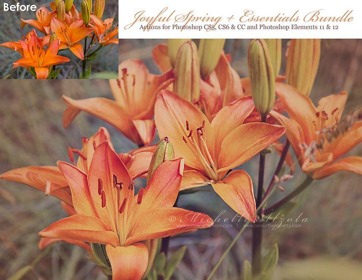 Joyful Spring plus Essentials Bundle (Photoshop Actions for CS5, CS6 & CC)