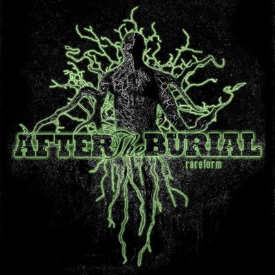 after the burial rareform reissue metal grind
