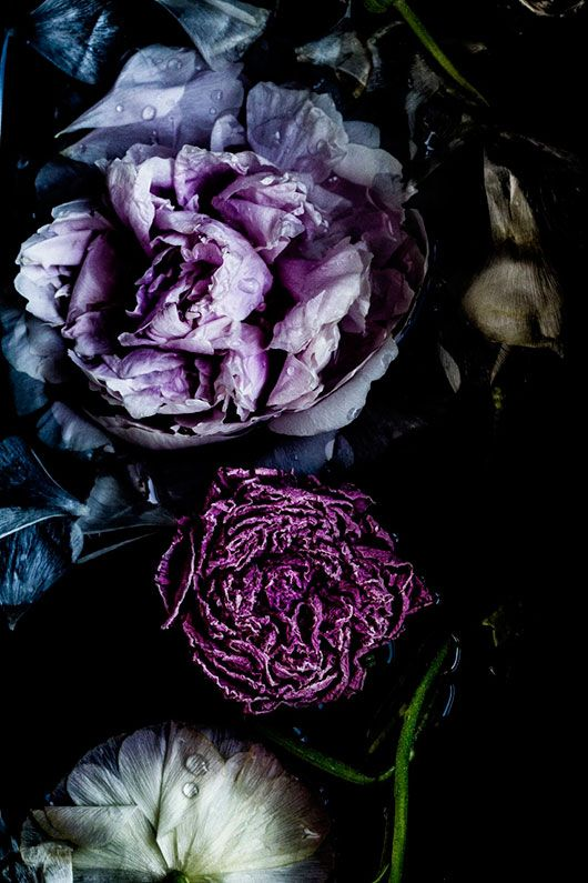 Dark, moody florals are the main subject of this romantic trend.