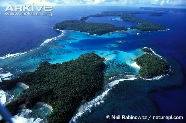 Aerial view of Vava'u island group, Tonga. Have been here,absolutely beautiful and beautiful Tongan people
