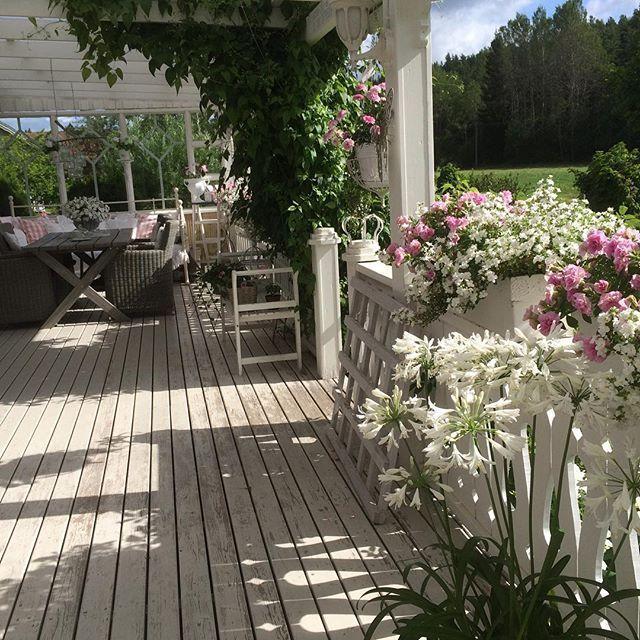 Oltre 25 fantastiche idee su giardini di casa su pinterest - Giardini in casa ...
