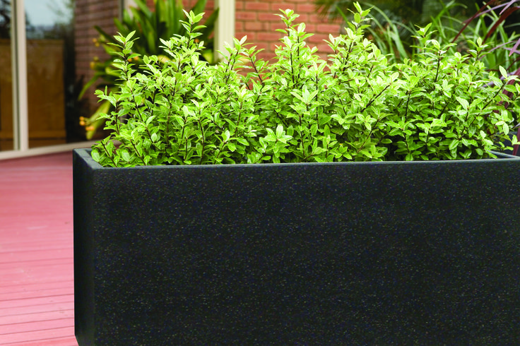 Northcote Pottery 80 x 31 x 36cm Black Precinct Lite Terrazzo Trough #urban #rectanglepot #fibrecement