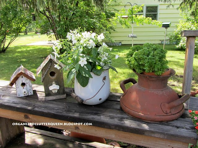 Potted plants and birdhouses