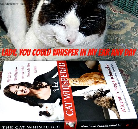 The Cat Whisperer giveaway on Cat Wisdom 101
