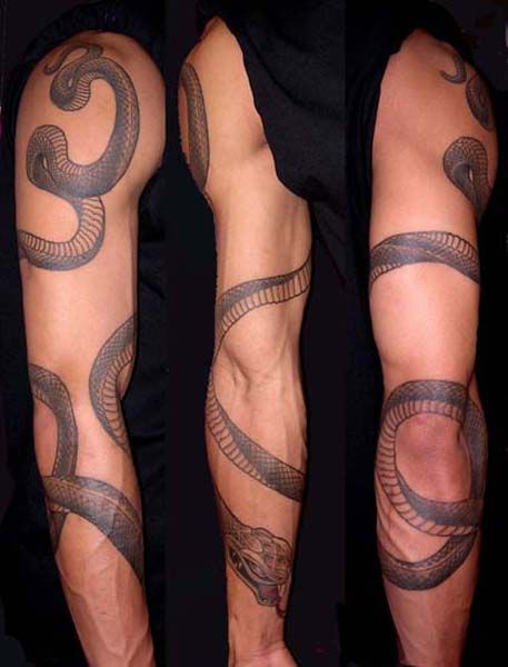 Womens Arm Tattoo Snake: 33 Best Images About Tattoo Designs On Pinterest