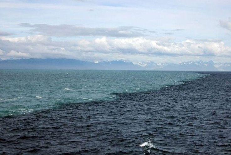 10 таинственных фактов об океане, которые никого не оставят равнодушными / Туристический спутник