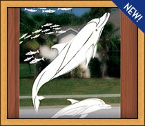 Looking For Dory Etched Glass Underwater Scene - Privacy, See-Thru Versions