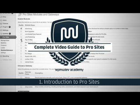 Pro Sites Tutorial Part 1: Introduction