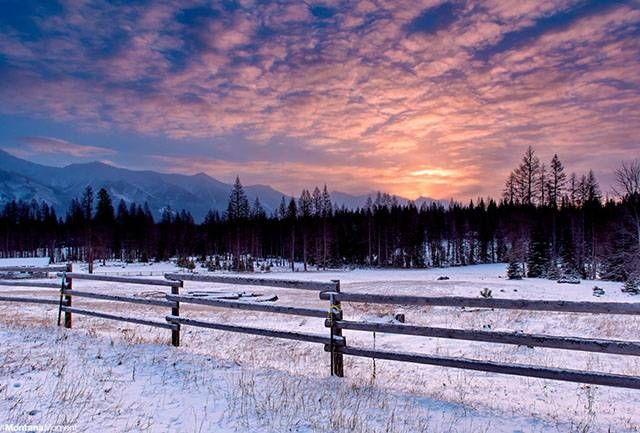 Moving to Montana