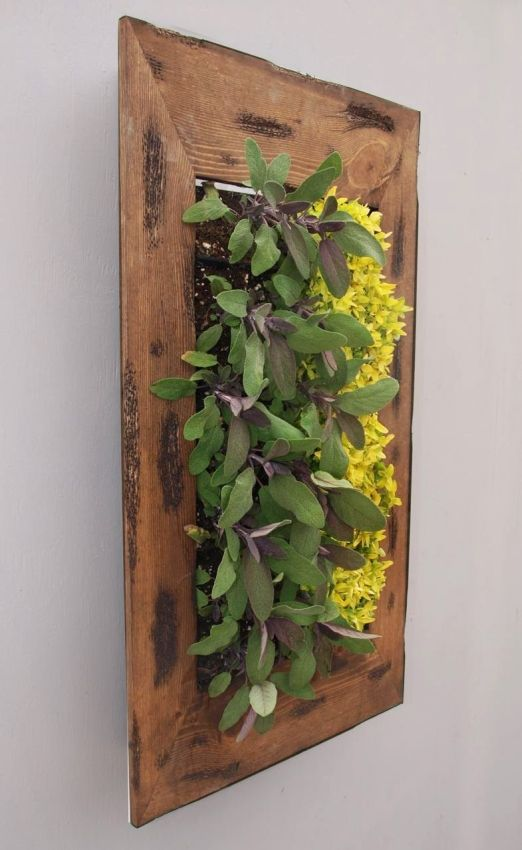 BrightGreen Living Wall Planter Kit With Frame Dark Walnut