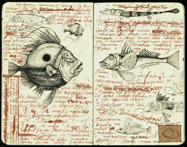 Fishes | by julia_julia.f
