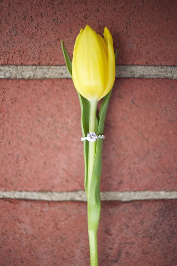 A single tulip makes for a great ring prop in this beautiful spring wedding photo.