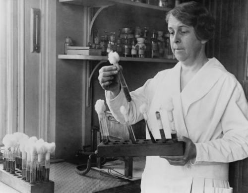 I didn't know, did you know®…  Today in women's history, scientist Alice Evans was born in 1881. She identified a bacterial infection carried by cows that could cause undulating fevers in humans. Through her discovery, the government enacted milk pasteurization laws, saving countless people's lives.