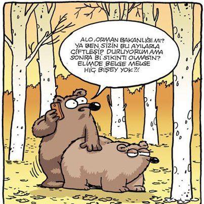 karikatür,komik, mizah, komik, penguen, selçuk erdem, hunili