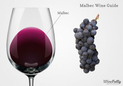 Learn all about Malbec! http://winefolly.com/review/types-dessert-wine/