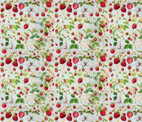 Strawberries, Vintage  fabric by strawberrysnail on Spoonflower - custom fabric