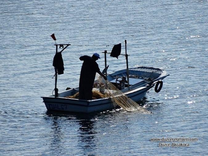 Akçakoca Balıkçı