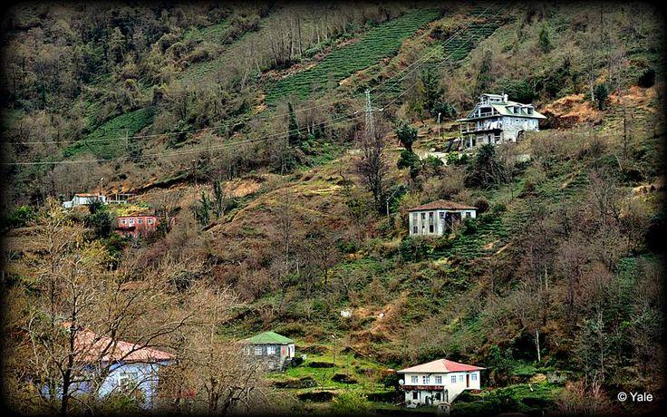 Esenkıyı Köyü
