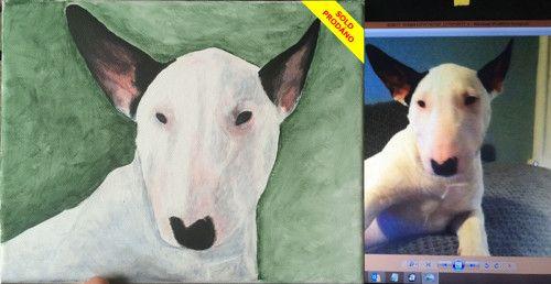 Portrét psa - bullterier