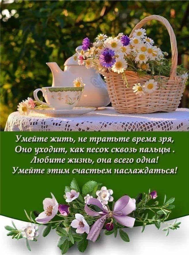 Мудрое пожелание доброго утра