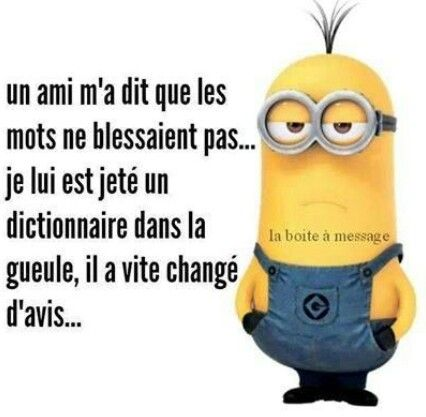 A friend told me words didn't hurt...I threw a dictionary at him and he soon changed his mind! Funny joke in french.