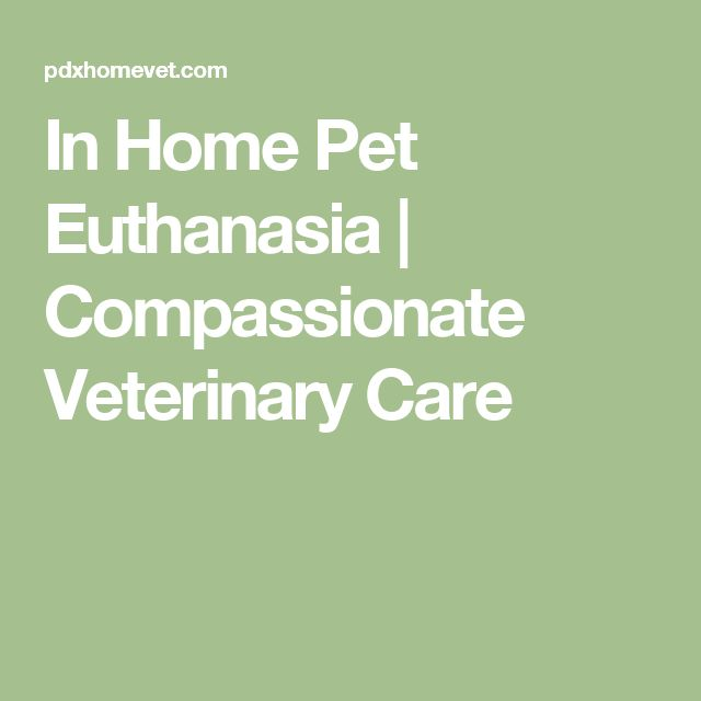 In Home Pet Euthanasia | Compassionate Veterinary Care