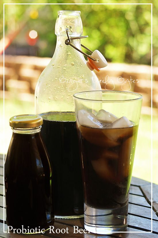 ... Daily Bytes: Healthy Soda Series: Probiotic, Homemade Root Beer