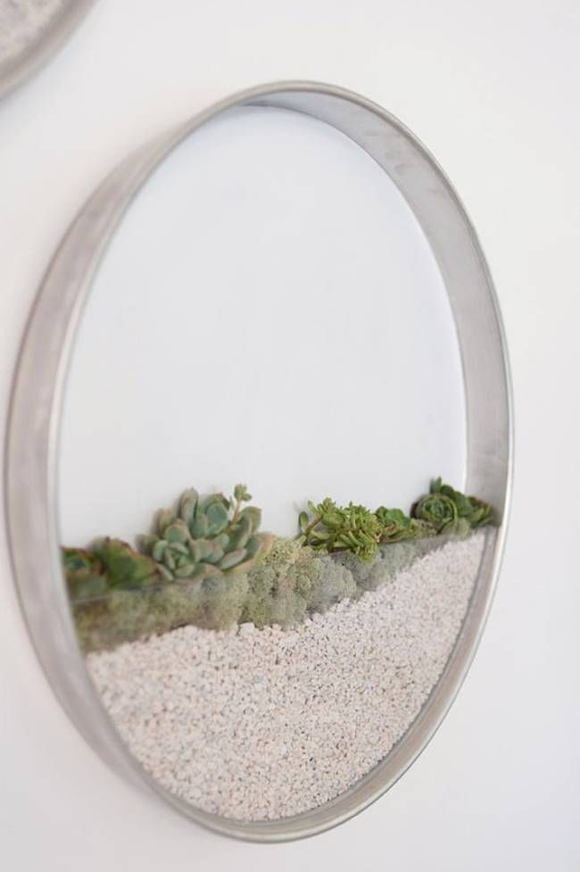 Measuring 22 inches in diameter, these gorgeous round terrariums feature an attached heavy duty plastic half-moon that can be filled will various suitable plants, mosses, soil and small rocks.