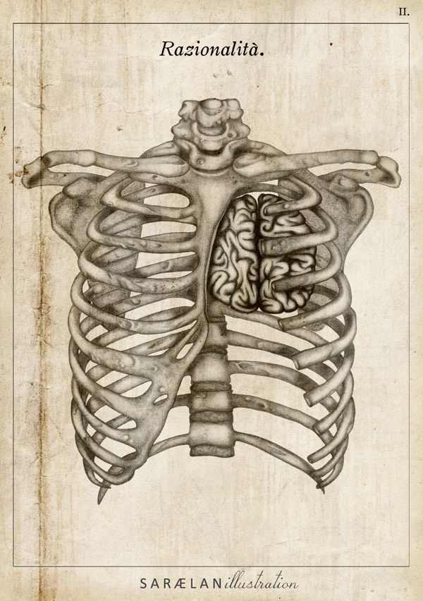 """""""Rationality"""" from ANATOMY LESSONS by Saraelan Donati.  If I got this, I would include the skull with a heart in it"""
