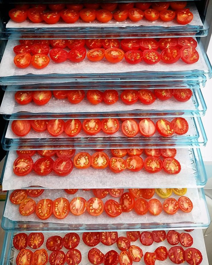 «Our new 9 tray industrial dehydrator is already getting a workout! ❤ #tomatoes #dehydrator #tomatoesforwinter #urbanfarming #digyourfood»