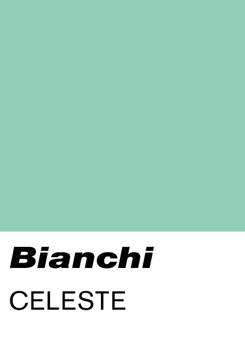 The best bike color - Bianchi Celeste = Pantone 332